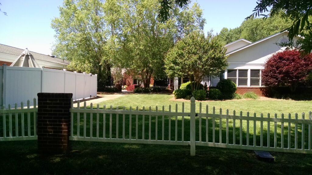 mocksville backyard.1